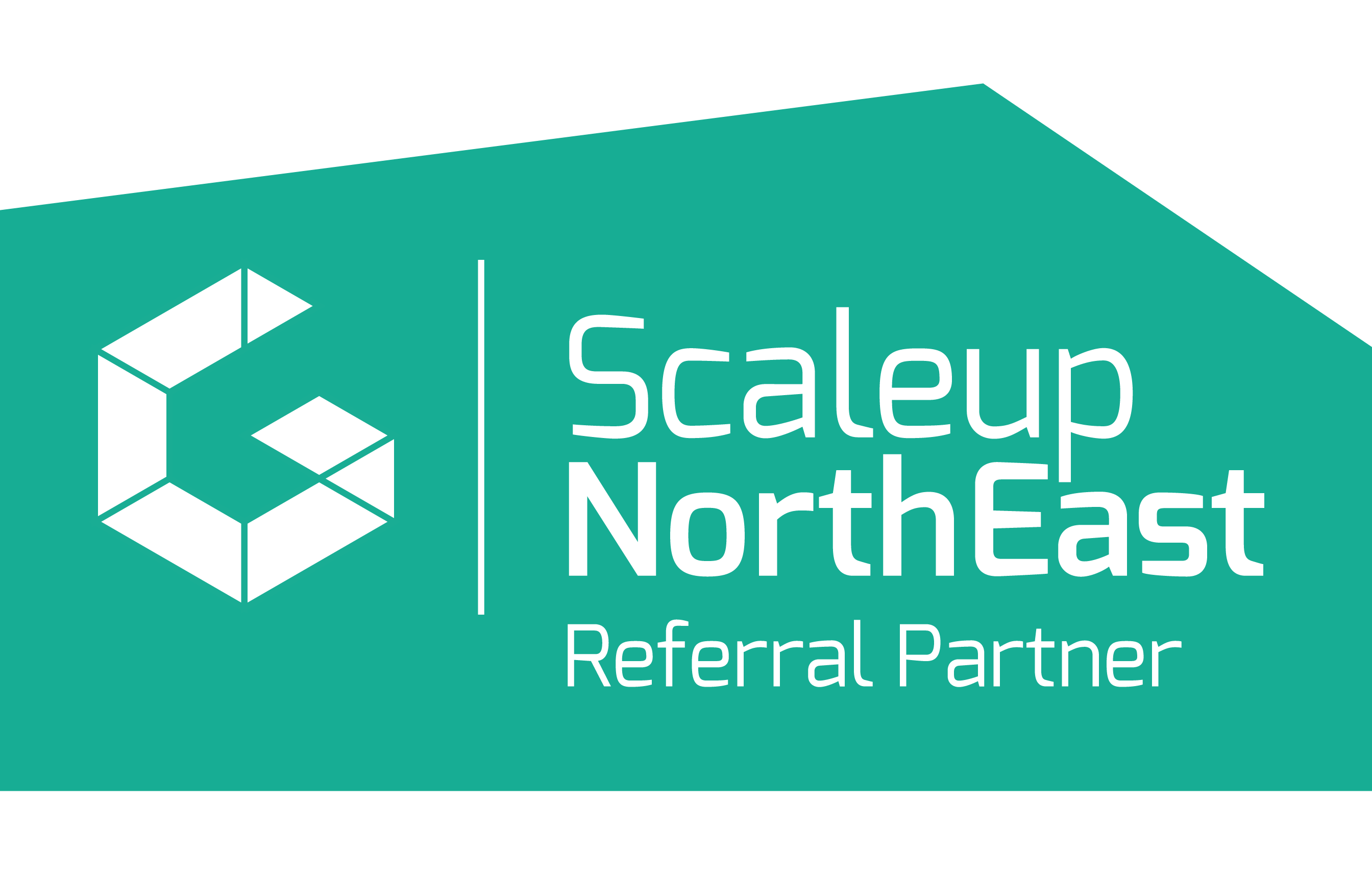 Scale Up Partner